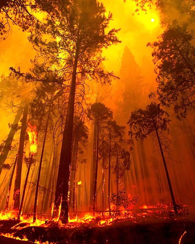 a-fire-gallery-3.jpg