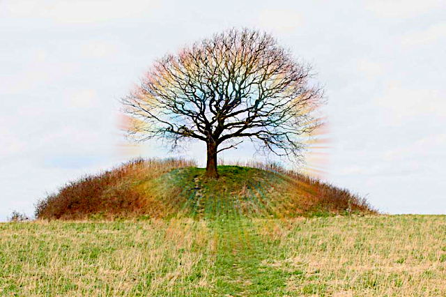 a_mysselh_j__a_danish_gravemound_from_the_early_bronze_age.jpg