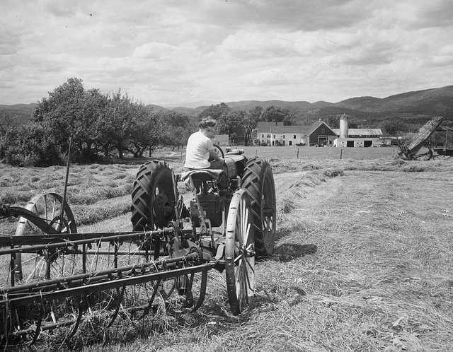 aa_farmer-robert-pikes-maine-in1945.jpg