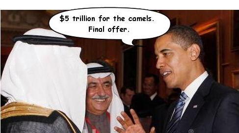 cameloffer.jpg