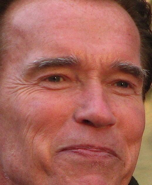 governor_arnold_schwarzenegger.jpg
