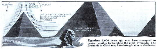 headertrimegypt.jpg