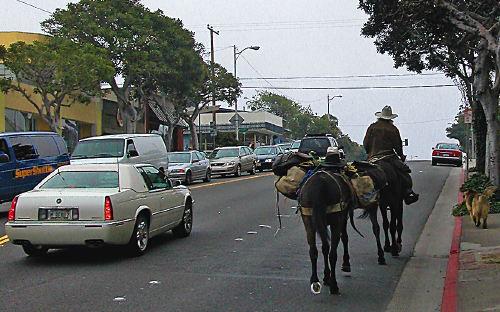 horsemanridingoff.jpg