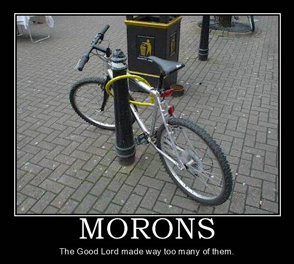 morons-demotivational-poster-1227797834.jpg