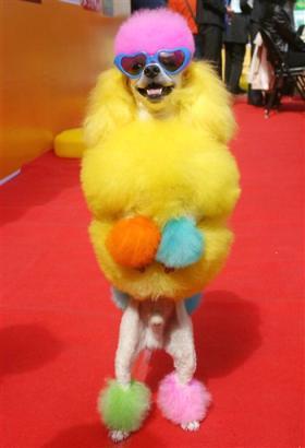 capt.bej11010020834.china_dog_festival_bej110.jpg