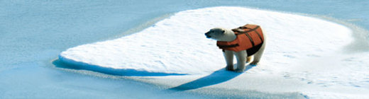 polarbearjacket.jpg