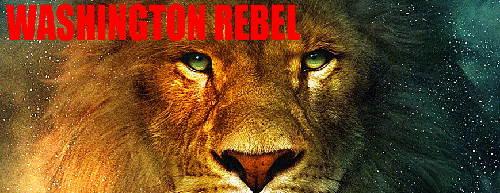 rebelwashinton.jpg