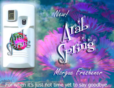 13196-ArabSpringAirFreshener.jpg