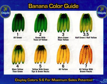 Banana-Colours001.jpg