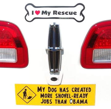 Bumper-Sticker-Dallas-TX-Shovel-Ready%20%282%29.jpg