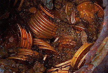 Saddle-Ridge-Hoard-of-coins-and-dirt.jpg