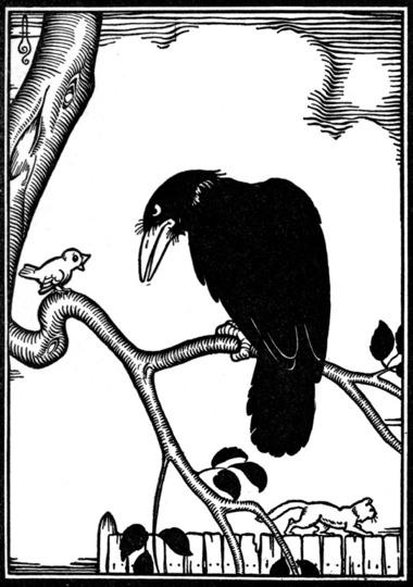 a-crow.jpg