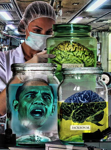 a_brain-in-a-jar-77267.jpg