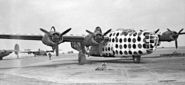 a_first_sergeant_b-24d_assembly_ship_or_judas_goat.jpg