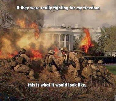 a_freedomfight.jpg