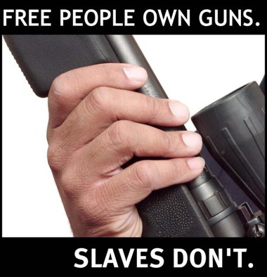a_gun_rights_slaves.preview.jpg