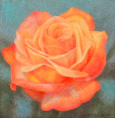 aasally_schrohenloher_artist_bio__pink_summer_rose.jpg