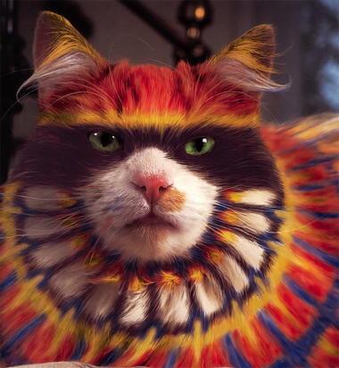 burtonsilverheatherbuschwhypaintcats1.jpg