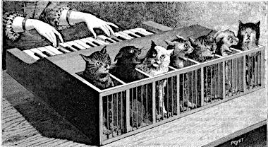 cat-organ-la-nature-1883-poyet-e1360628810292.jpg