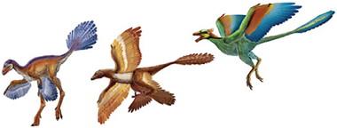 dinosaur-pageant-550.jpg