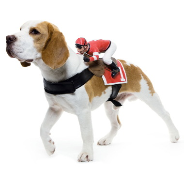 dog-riders-pet-costumes-4.jpg
