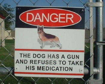 doggun.jpg
