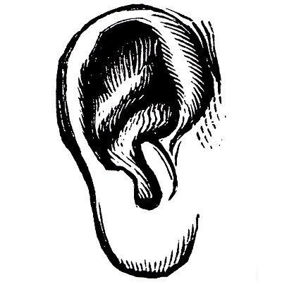 earwitness.jpg
