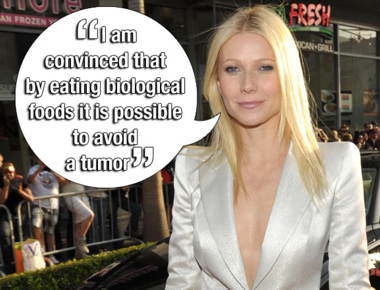 gal-stupid-paltrow.jpg