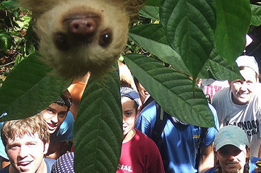 hi-sloth-photobomb-852.jpg
