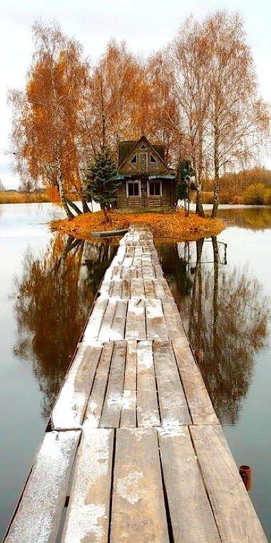house_in_the_woods._-_imgur.jpg