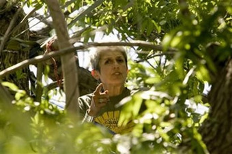 joan-baez-trees.jpg
