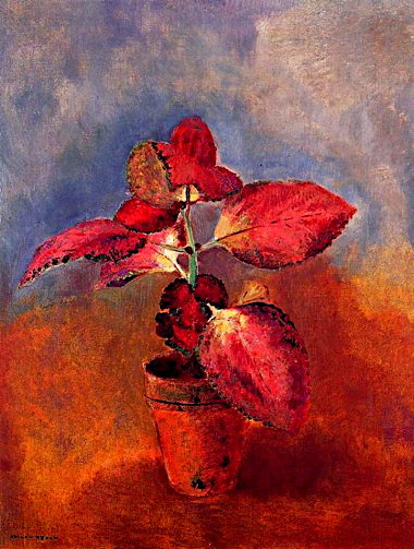 odilon_redon___begonia_in_a_pot.jpg
