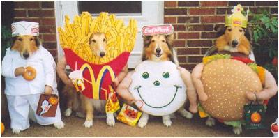 pet-costumes1.jpg
