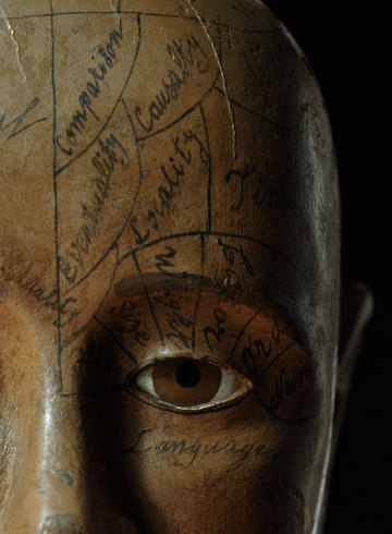 phrenology-head-eye.jpg