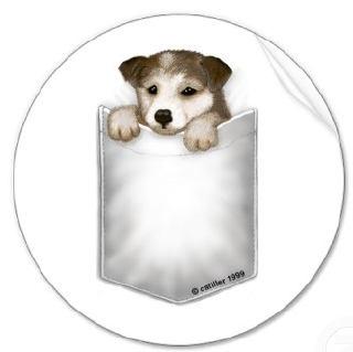 puppyhotpocket.jpg