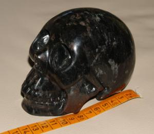 skull2.jpeg