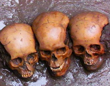 skulls-found-under-sacrifice-stone.jpg