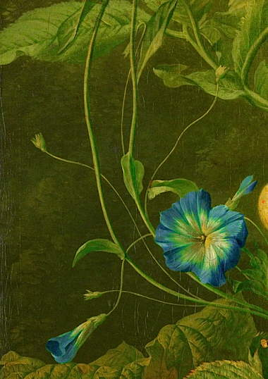 wybrand_hendriks_-_fruit__flowers_and_dead_birds_detail.jpg