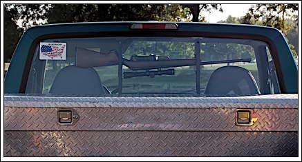 truckgun.jpg