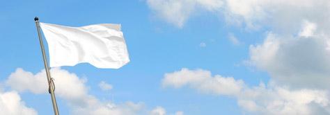 whitedemflag.jpg