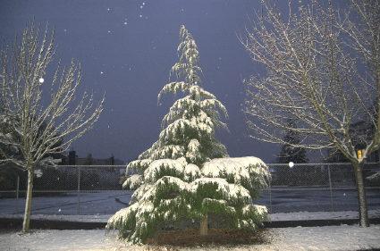 winterset2.jpg