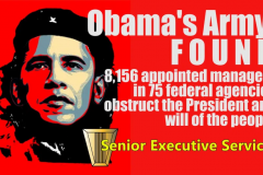 screenshot_2020-12-17-obama-senior-executive-service-meme-jpg-webp-image-980-c397-551-pixels