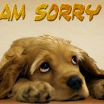 Well, Ex-cuuuse Me!: My Preformated Apology for Offenses Given and Those I Have Yet To Give