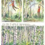 "Julian Peters' Illustrated ""Birches"" by Robert Frost"