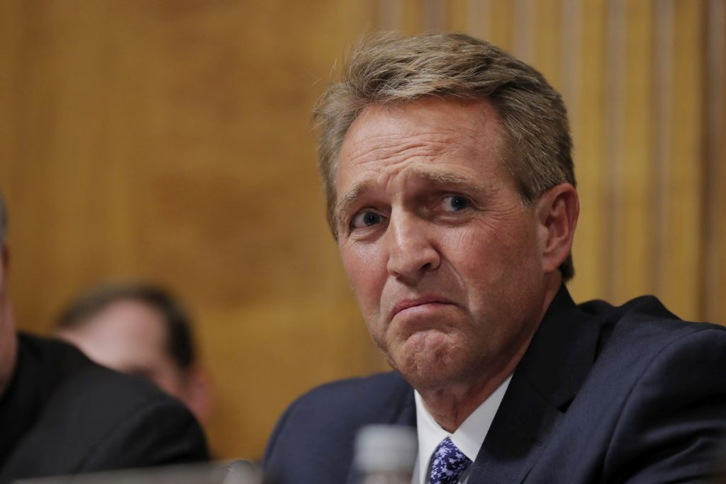 Government by Flake