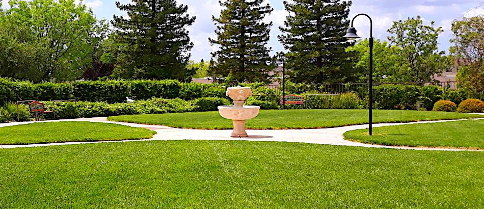 In Roseleaf Gardens