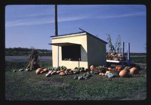 Farm stand, Frederick, South Dakota