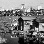 The Illustrated Desolation Row