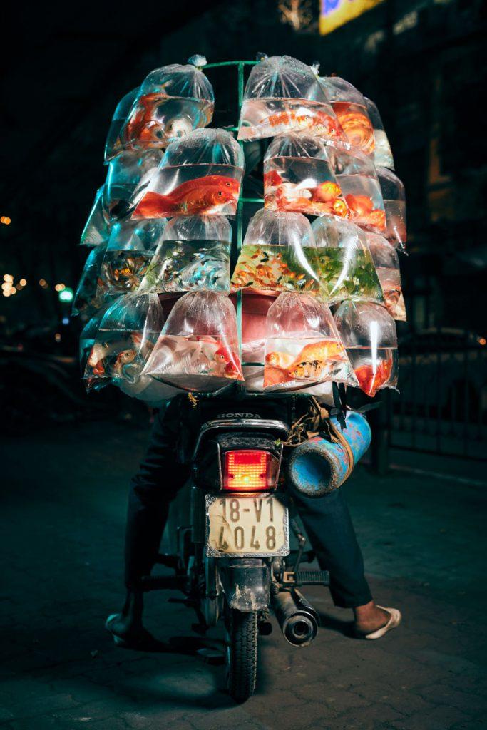 Hanoi_Day12030